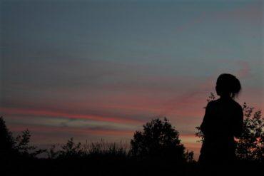 лес вечер закат
