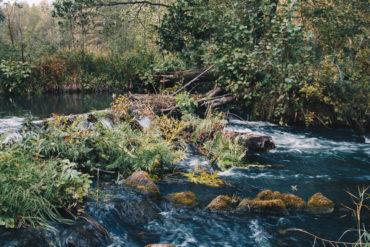 река, вода, мельница, лес, природа, деревья, небо, вечер, путешествие, осень, октябрь,