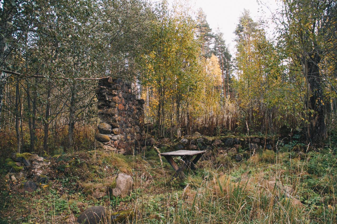 река, вода, мельница, лес, природа, деревья, небо, вечер, путешествие, осень, октябрь, стол, развалины