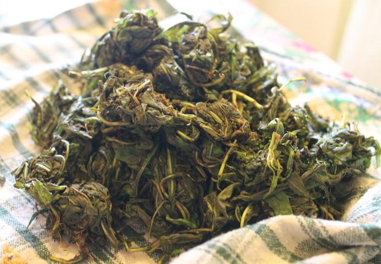 иван-чай, травы, польза, лес, лекарственные травы, лесная аптека